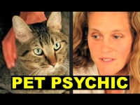 About Pet Psychic